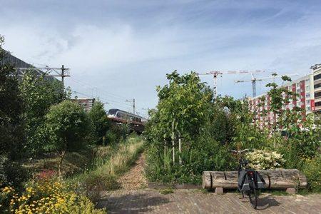 circulair bouwen vloer kweektuin singelpark